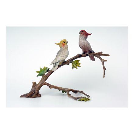 2 Kakadu auf Äste