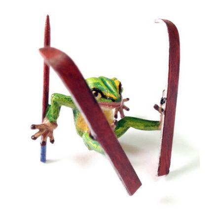 Frosch auf Ski